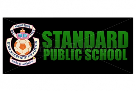 Logo Design For Standard Public School